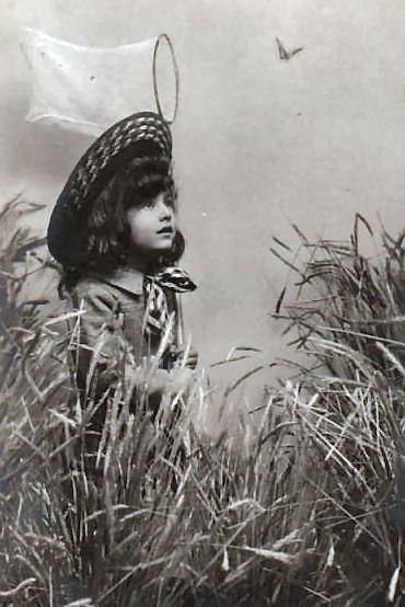 1900butterflynet